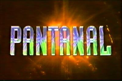 dvd da novela pantanal